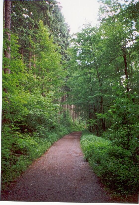 Wanderweg2
